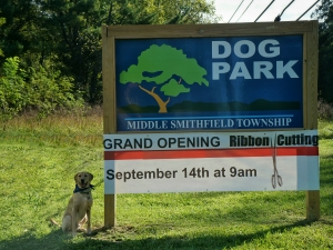 The new dog park is a great opportunity for residents and dogs to enjoy the community.